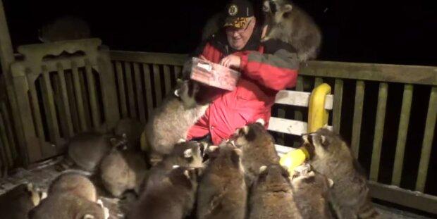 Screenshot: YouTube/James Blackwood - Raccoon Whisperer